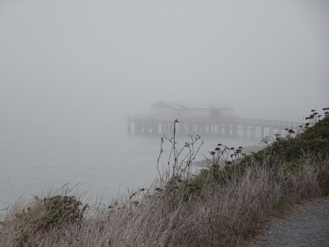 Point Reyes boathouse