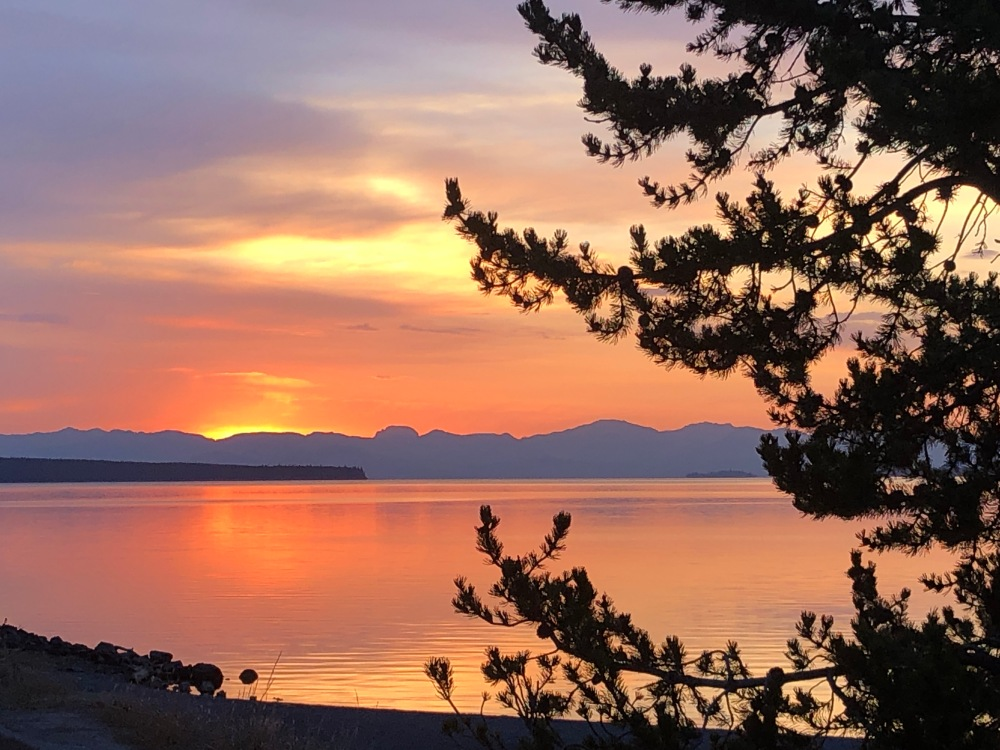 sunrise yel 4